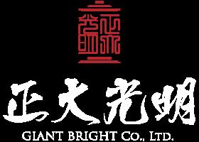 全球首創 OLED 高科技寺廟光明燈 | 正大光明